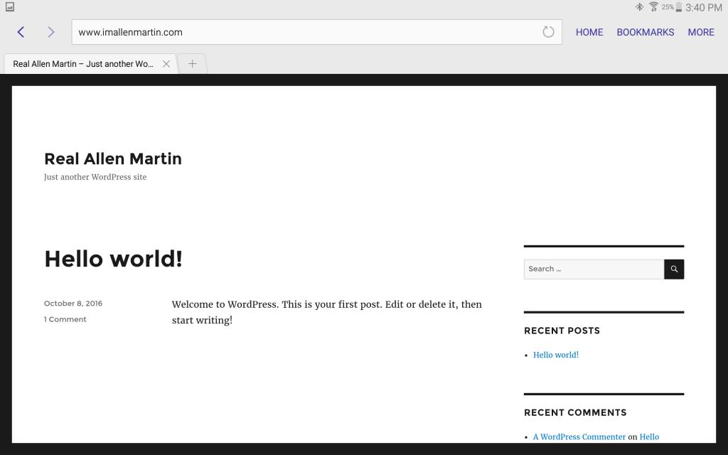 Screenshot - Unfinished Website 'Real Allen Martin':
