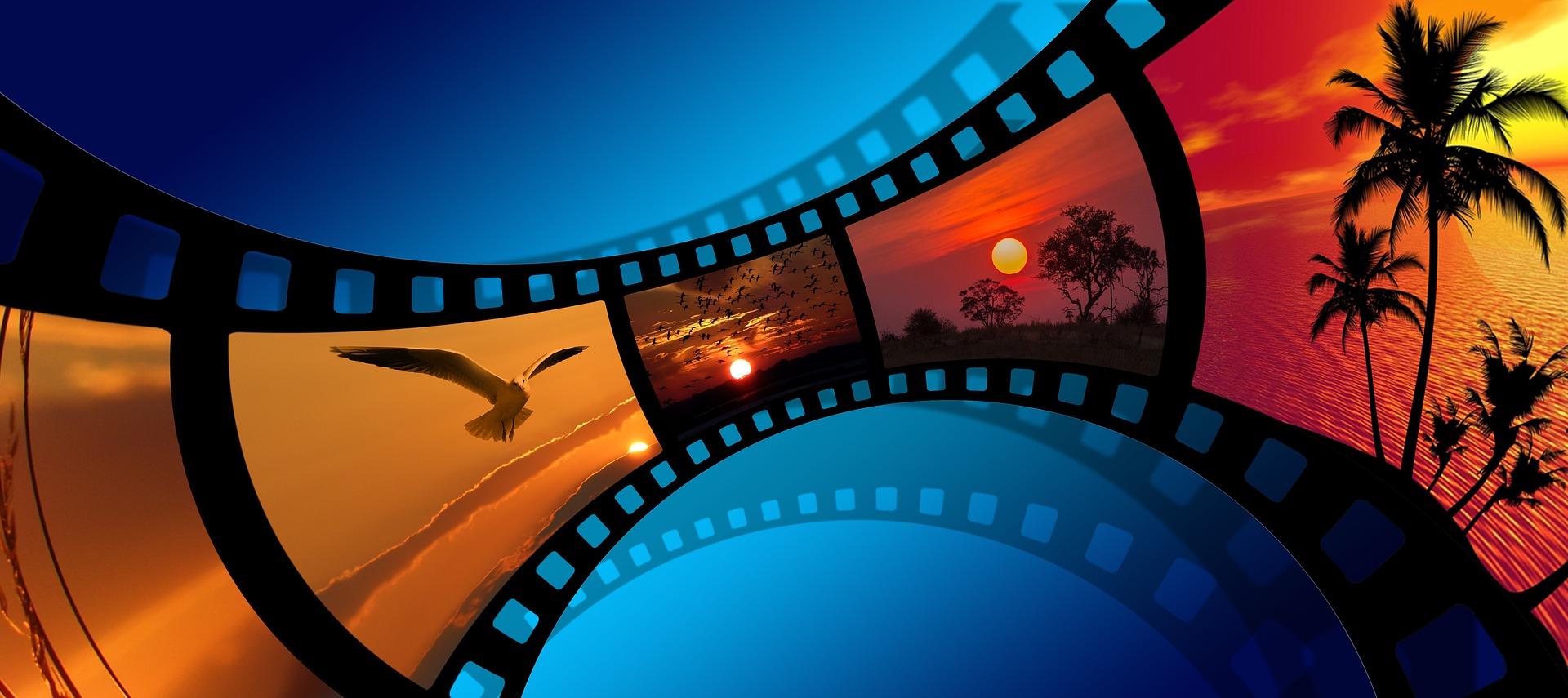 Reel of film image: