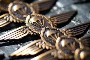 Airforce Wings image:
