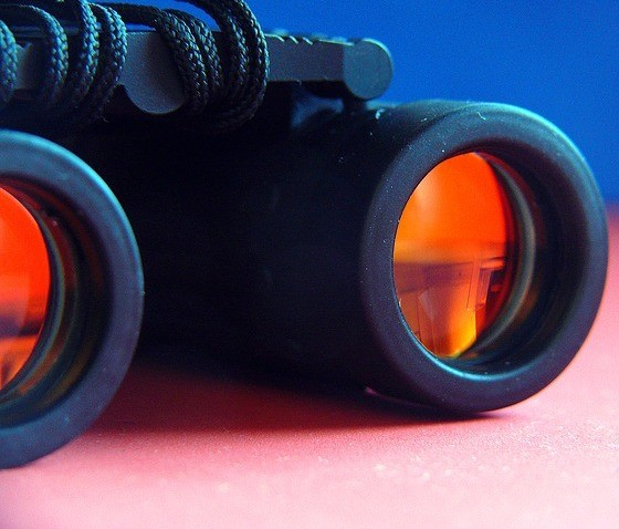 Be The Boss Network Review - Binoculars