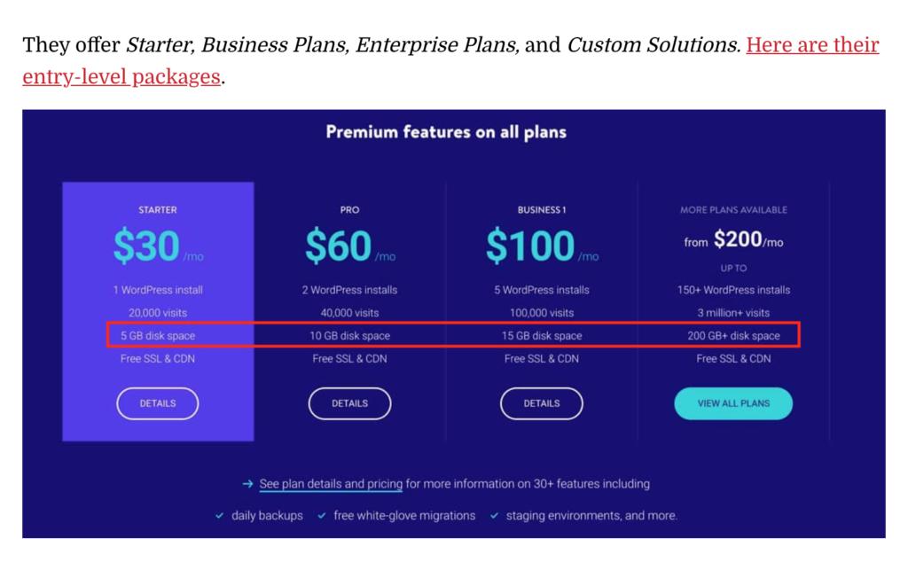 Kinsta Hosting Review - Premium Features