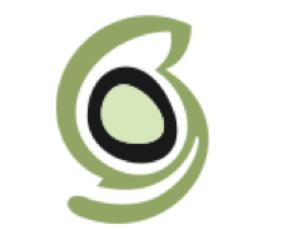 SiteGround Web Hosting Review - Logo