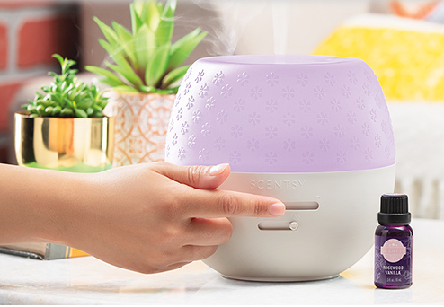 Scentsy MLM Review - product pic